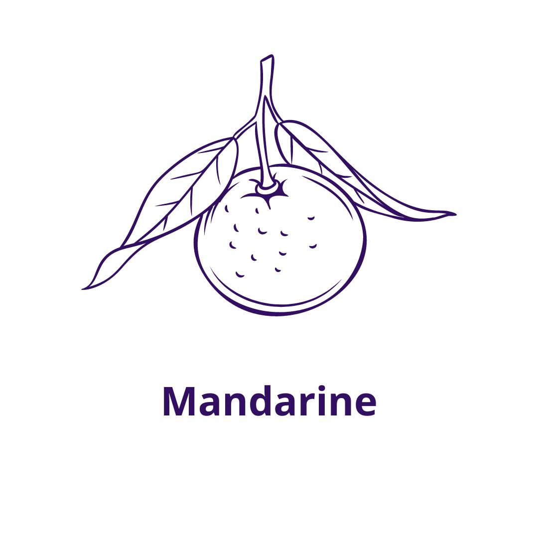 Bouteille goût Mandarine