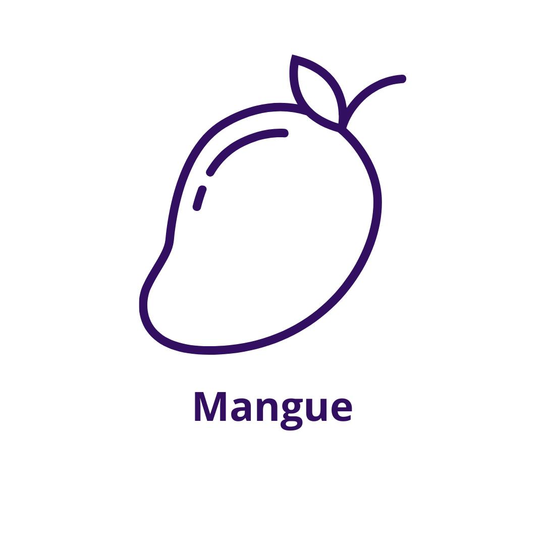 Bouteille goût Mangue