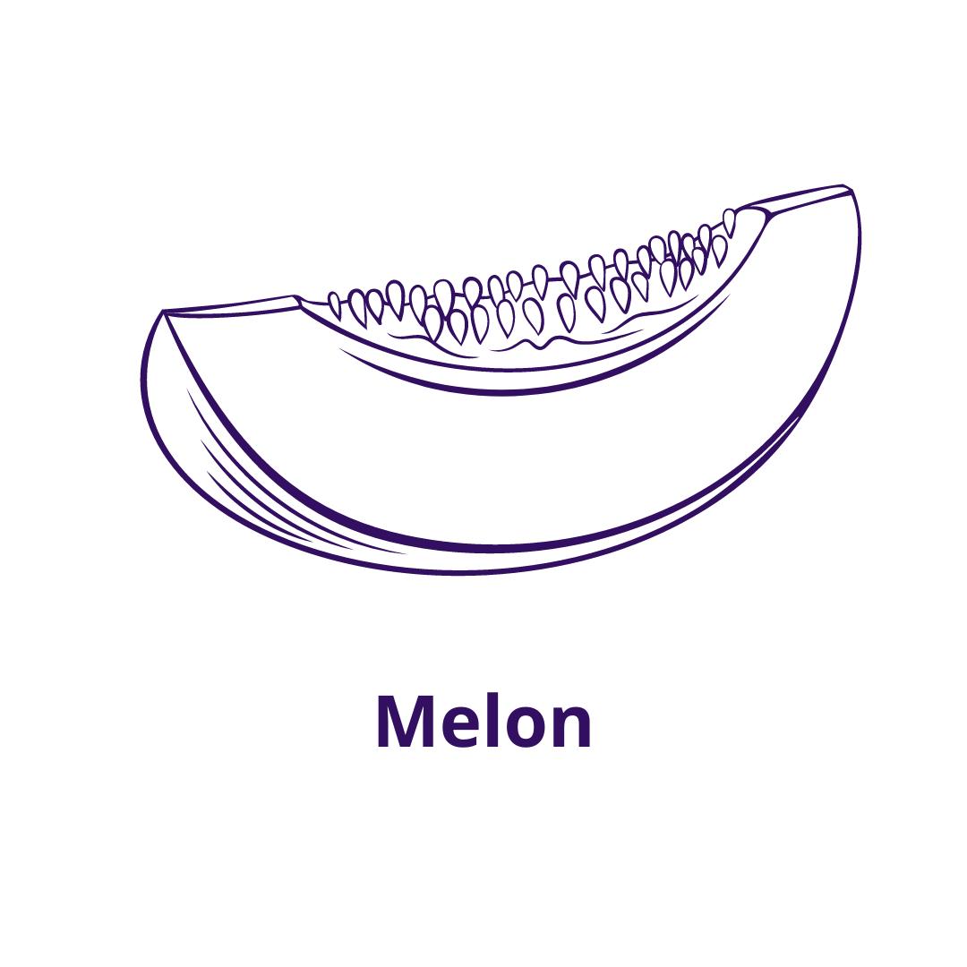 Bouteille goût Melon
