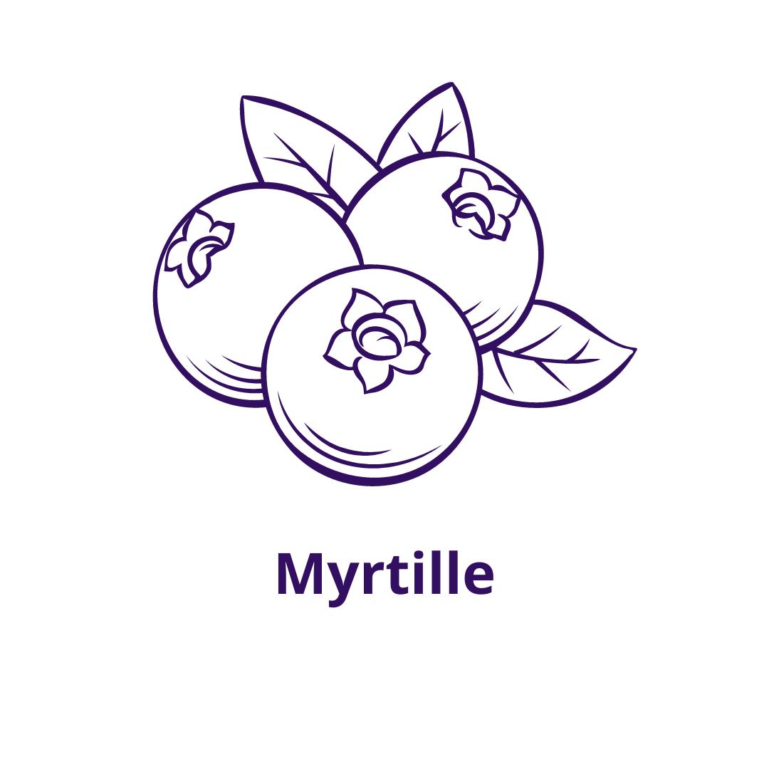 Bouteille goût Myrtille