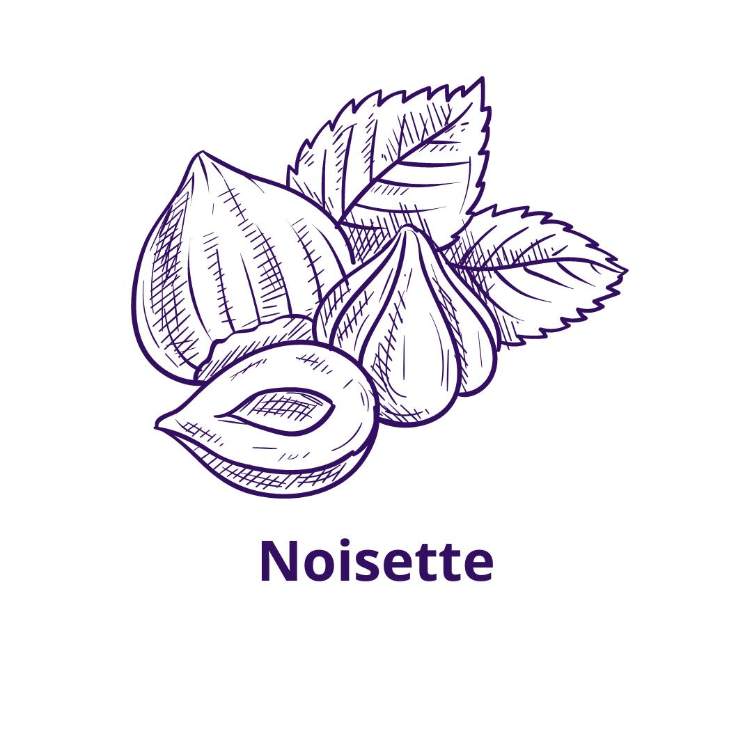 Bouteille goût Noisette