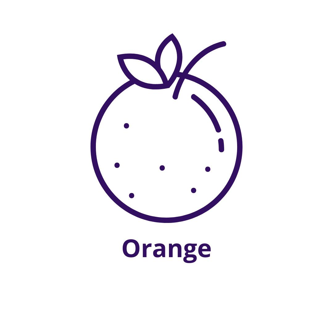 Bouteille goût Orange