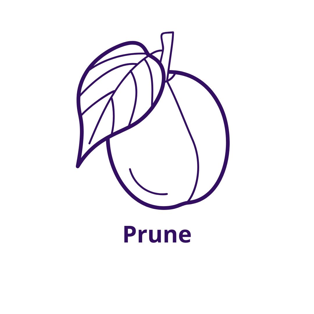 Bouteille goût Prunelle Prune