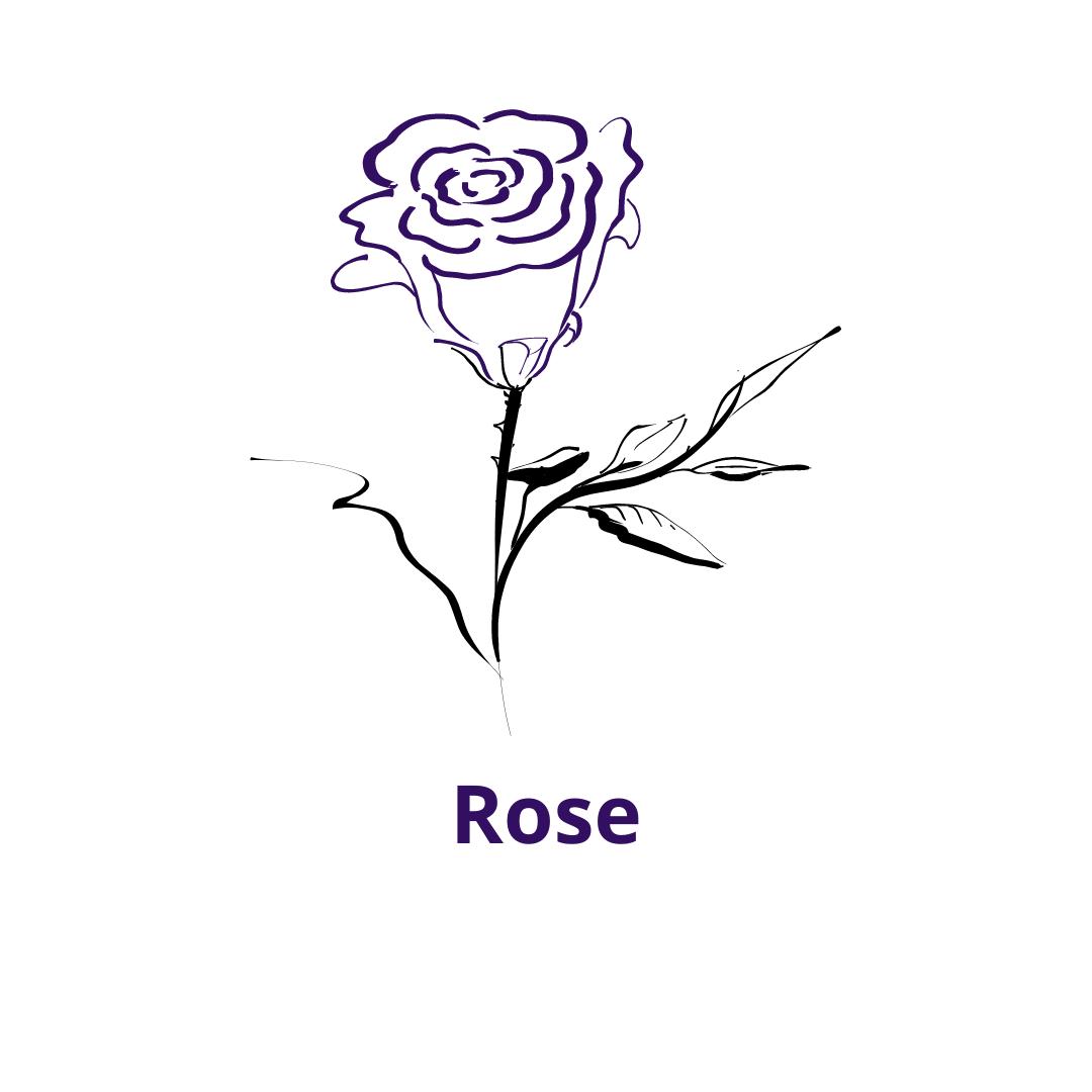 Bouteille goût Rose