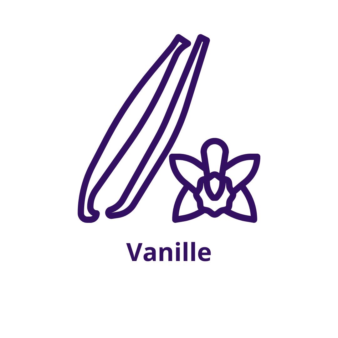 Bouteille goût Vanille